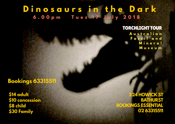 Dinosaurs in the Dark event poster