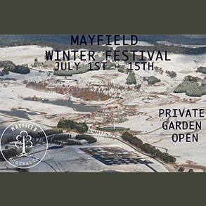 Mayfield Winter Festival